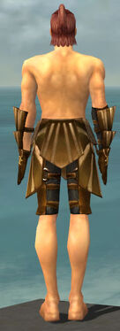 Ranger Sunspear Armor M gray arms legs back