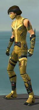 Assassin Canthan Armor M dyed side