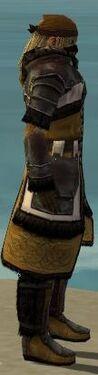 Ranger Norn Armor M dyed side