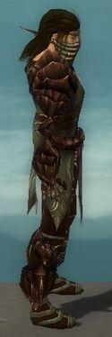 Ranger Primeval Armor M gray side alternate
