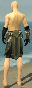 Ritualist Elite Kurzick Armor M gray arms legs back