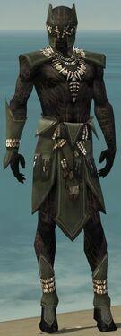 Ritualist Kurzick Armor M gray front