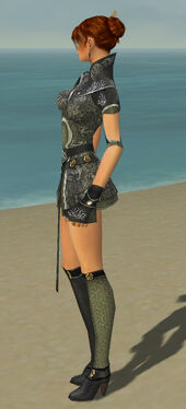 Elementalist Canthan Armor F gray side