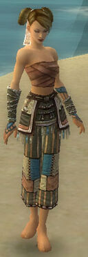 Monk Luxon Armor F gray arms legs front