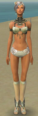 Paragon Vabbian Armor F gray chest feet front