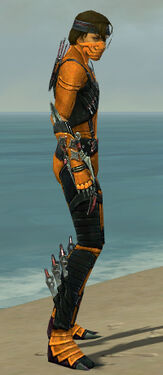 Assassin Elite Canthan Armor M dyed side