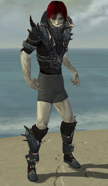 Necromancer Asuran Armor M gray chest feet front