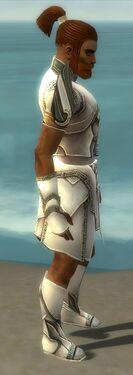 Paragon Asuran Armor M gray side
