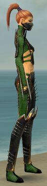 Assassin Exotic Armor F dyed side alternate