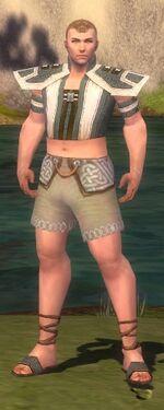 Monk Elite Saintly Armor M gray chest feet front