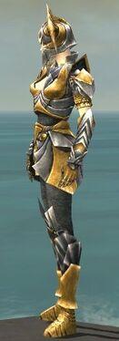 Warrior Templar Armor F dyed side