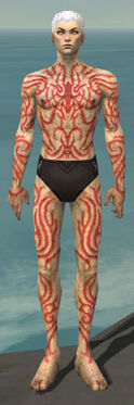 Necromancer Scar Pattern Armor M dyed front