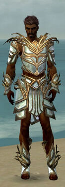 Paragon Primeval Armor M dyed front