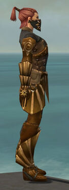 Ranger Sunspear Armor M gray side