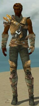 Ranger Tyrian Armor M gray front