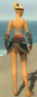 Warrior Luxon Armor F gray arms legs back