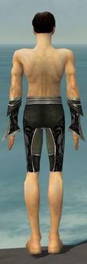 Elementalist Shing Jea Armor M gray arms legs back