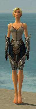 Warrior Sunspear Armor F gray arms legs front