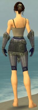 Warrior Platemail Armor F gray arms legs back