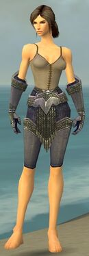 Warrior Platemail Armor F gray arms legs front