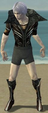 Necromancer Vabbian Armor M gray chest feet front