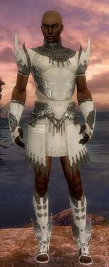 Paragon Vabbian Armor M gray front