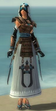 Dervish Monument Armor F dyed front