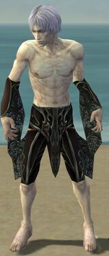 Necromancer Vabbian Armor M gray arms legs front