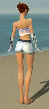 Elementalist Ascalon Armor F gray arms legs back