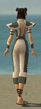 Monk Elite Saintly Armor F gray back