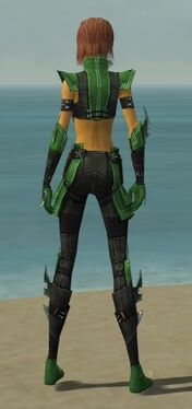 Assassin Luxon Armor F dyed back