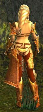 Jora Armor Norn Back