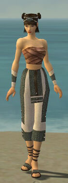 Monk Elite Saintly Armor F gray arms legs front