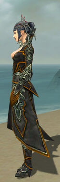 Necromancer Monument Armor F dyed side