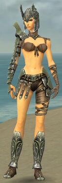 Warrior Elite Gladiator Armor F gray front