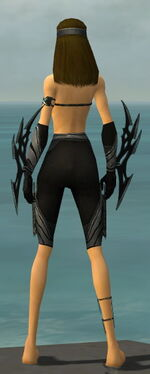 Assassin Vabbian Armor F gray arms legs back
