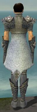 Elementalist Stoneforged Armor M gray back