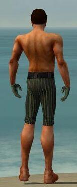 Mesmer Kurzick Armor M gray arms legs back