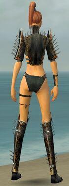 Assassin Exotic Armor F gray chest feet back