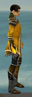 Elementalist Shing Jea Armor M dyed side