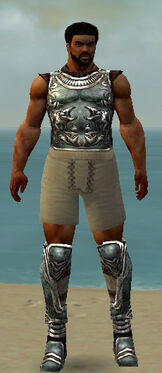 Warrior Istani Armor M gray chest feet front