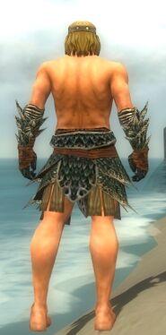 Warrior Luxon Armor M gray arms legs back