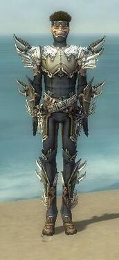 Assassin Asuran Armor M gray front