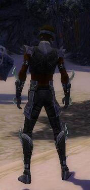 Assassin Luxon Armor M gray back