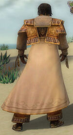 Dunkoro Armor DajkahInlet Back