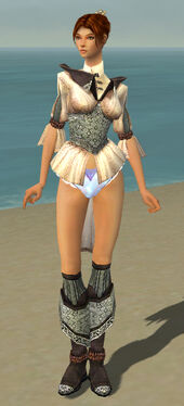 Elementalist Ancient Armor F gray chest feet front