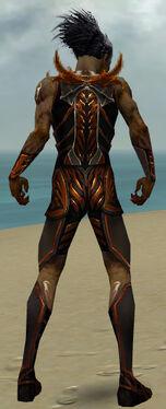 Necromancer Istani Armor M dyed back