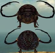 Beetle Metamorphosis effect