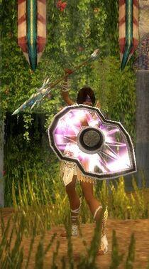 Character-Elia Shieldbreaker