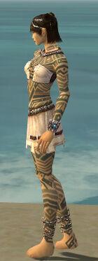 Monk Labyrinthine Armor F gray side